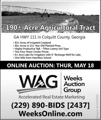 Online Auction Thur, May 18