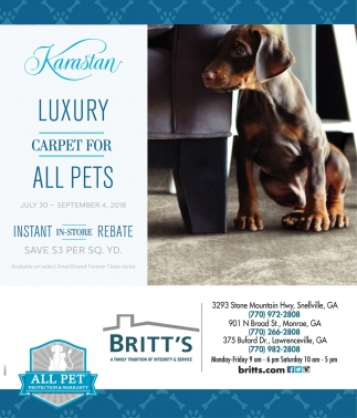 Luxury Carpets for All Pets