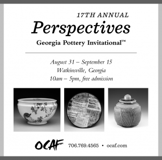 17th Annual Perspectives
