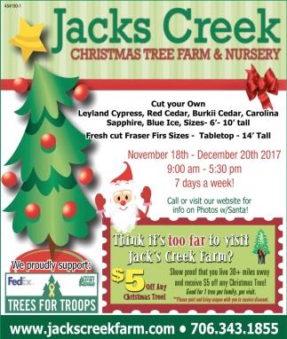 Christmas Tree Farm & Nursery
